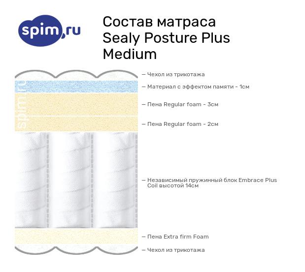 Схема состава матраса Sealy Posture Plus Medium в разрезе
