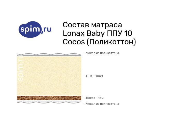Схема состава матраса Lonax Baby ППУ 10 Cocos в разрезе