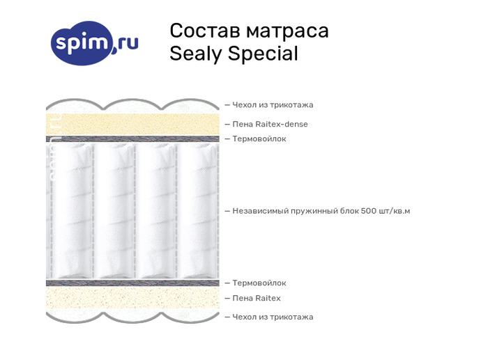 Схема состава матраса Sealy Special в разрезе
