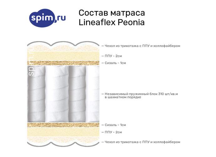 Схема состава матраса Lineaflex Peonia в разрезе