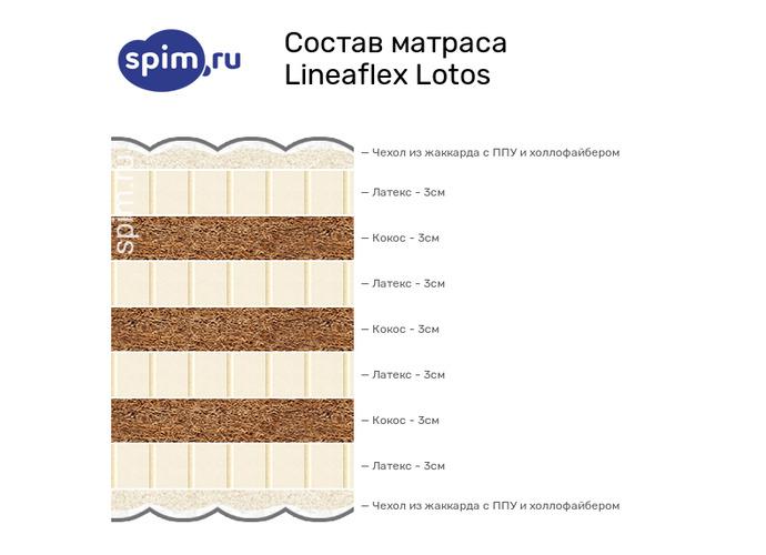Схема состава матраса Lineaflex Lotos в разрезе