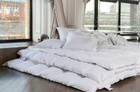 Пуховое одеяло German Grass White Familie Down, теплое