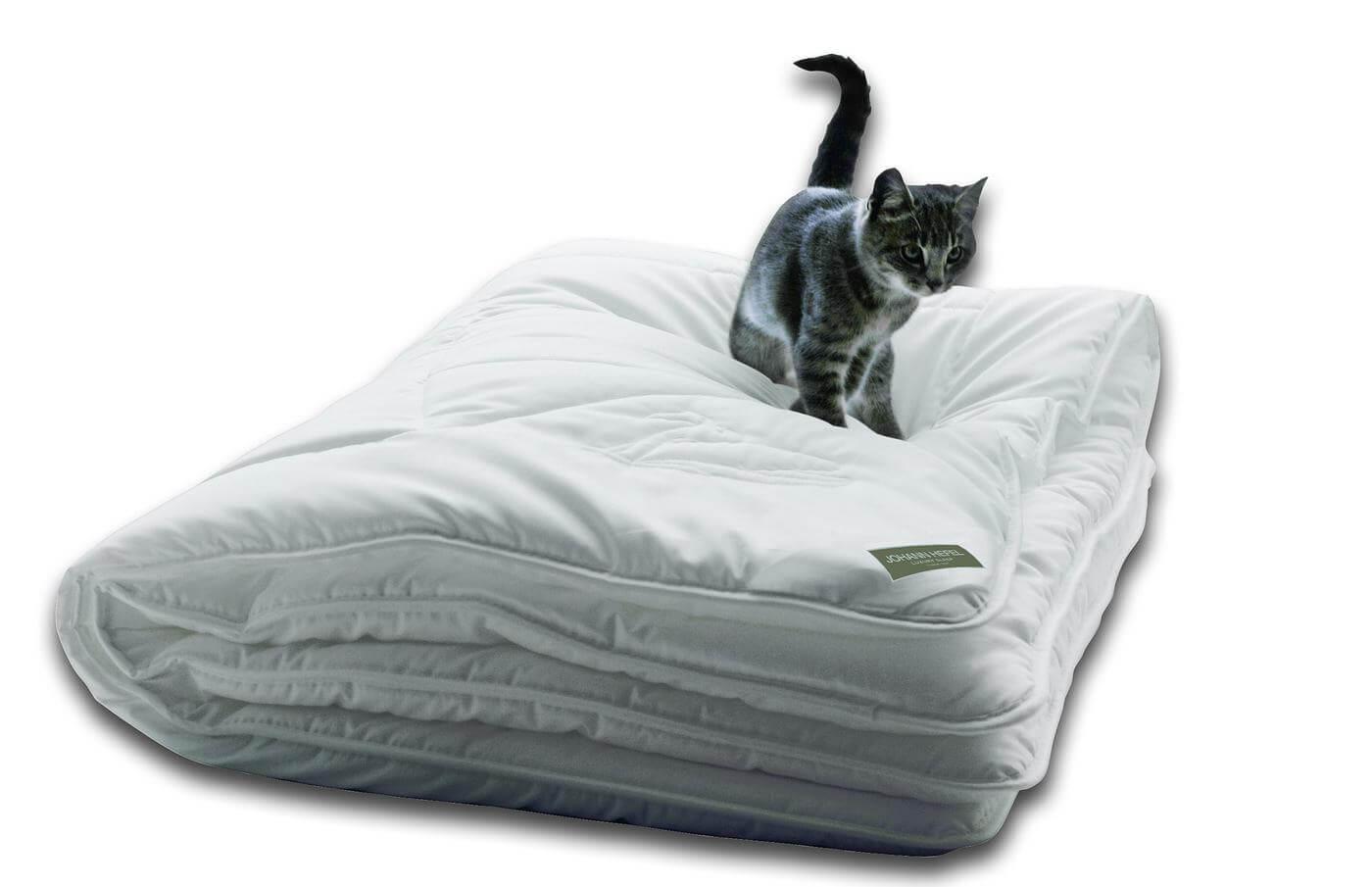 Аллергия на одеяло