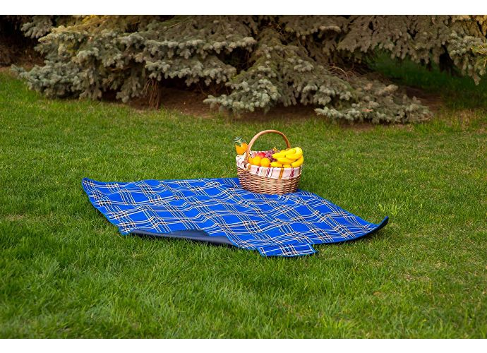 Плед Sleepy Picnic, синий, 150х170 см