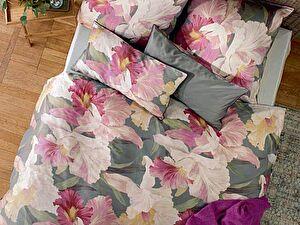Купить постельное белье Curt Bauer Marseille