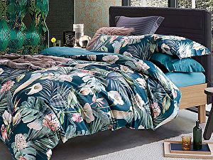 Купить постельное белье Asabella 1177