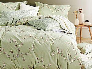 Купить постельное белье Asabella 209*