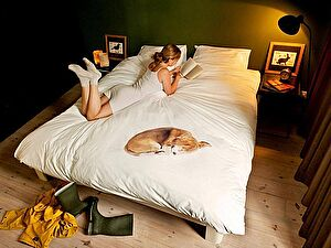 Купить комплект Snurk Собака Боб
