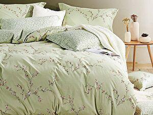 Купить постельное белье Asabella 209