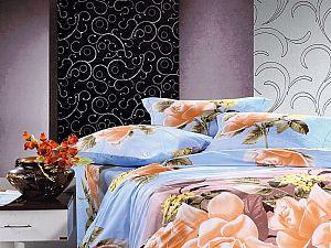 Постельное белье Diva Afrodita Premium-3D PR-023