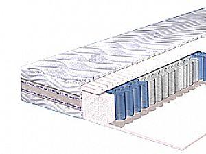 Lineaflex Klemente