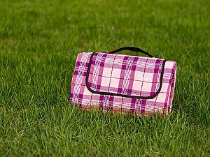 Плед Sleepy Picnic, розовый, 150х170 см