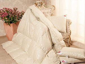 Одеяло пуховое Легкие сны Камелия, теплое