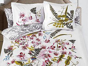 Постельное белье Serg Look Orchid