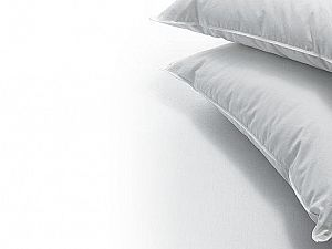 Подушка Dauny Soft Plus 50
