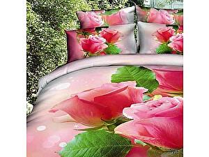 Постельное белье Diva Afrodita Premium-3D PR-008