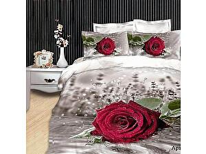 Купить постельное белье Diva Afrodita DA Premium-3D PR-025