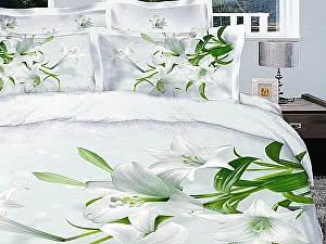 Постельное белье Diva Afrodita Premium-3D PR-047
