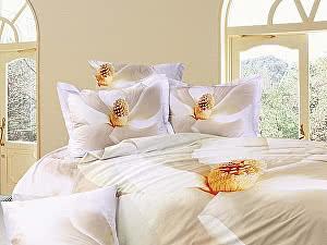 Купить постельное белье Diva Afrodita DA Premium-3D PR-102