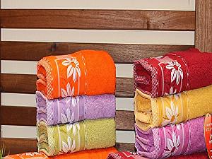 Набор из 6-ти полотенец Rose Ромашка 50х90 см