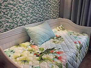 Купить плед Natures Яркие цветы с подушкой
