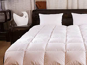 Купить одеяло Primavelle Argelia