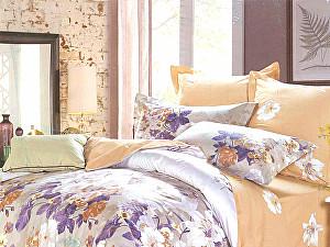Купить постельное белье СайлиД B-145