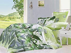Купить постельное белье СайлиД B-151