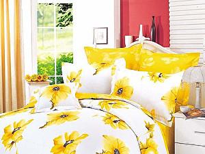 a96b1f7de5d2 Желтое постельное белье. Купите комплект постельного белья желтого ...