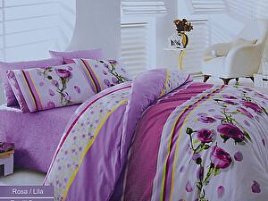 Купить комплект Cotton life Rosa (50х70 см), лиловый