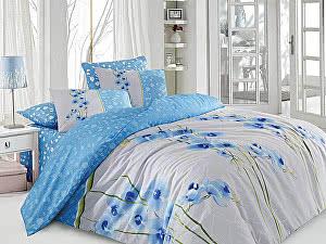 Постельное белье Cotton Life Orkide (70х70 см), голубой
