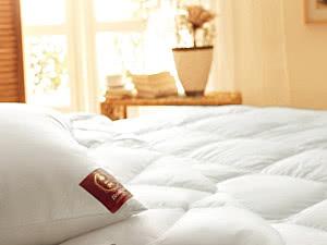 Купить одеяло Brinkhaus Blanche, легкое