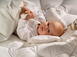 Купить одеяло Norsk Dun Dozy