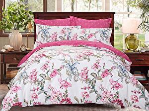 Купить постельное белье СайлиД B-184