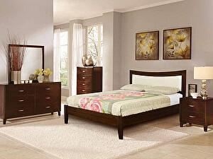 Купить кровать Диамант-М Бали-6 (лак)