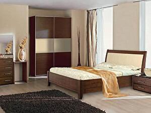Купить кровать Диамант-М Руно-5 (лак)