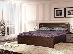 Купить кровать Диамант-М Руно-7 (лак)