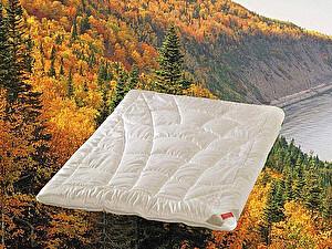 Купить одеяло Hefel Balance, всесезонное