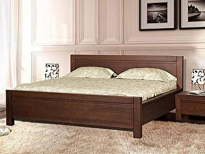 Купить кровать Диамант-М Руно-6 (лак) с подъемным механизмом и ящиком