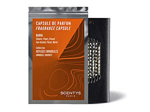 Купить ароматизатор Scentys Bahia