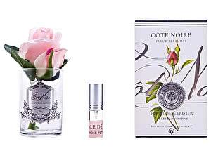 Купить ароматизатор Cote Noire Rose Bud Cherry Blossom Pink арт. GMR43