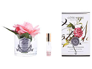 Купить ароматизатор Cote Noire French Rose  Cherry Blossom Pink арт. GMR03