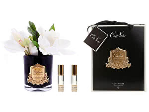Купить ароматизатор Cote Noire Magnolias арт. SFP08