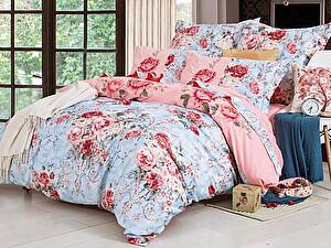 Купить постельное белье СайлиД D-190