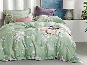 Купить постельное белье Asabella 1295