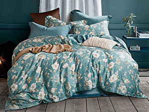 Купить постельное белье Asabella 1301