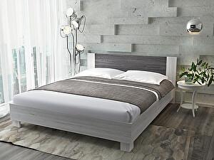 Купить кровать Sontelle Ферри с матрасом Sante Roll 16 R