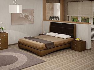 Купить кровать Toris Иона Лило 160х200