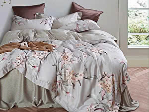 Купить постельное белье Asabella 1307