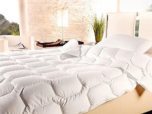 Купить одеяло Brinkhaus Summer Dream Silk, легкое 220х240